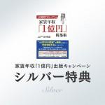 campaign_silver_main